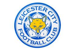 Leicester City Foxes logo
